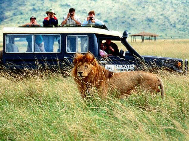 africa-safari1_-_copia_(2)