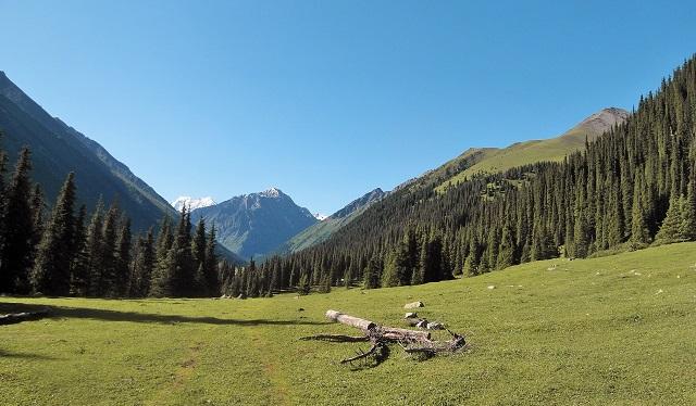 Valle de Altyn-Arashan. Presioso.